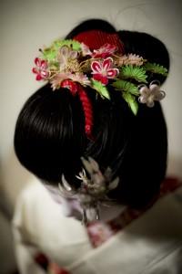 geisha1-507x760